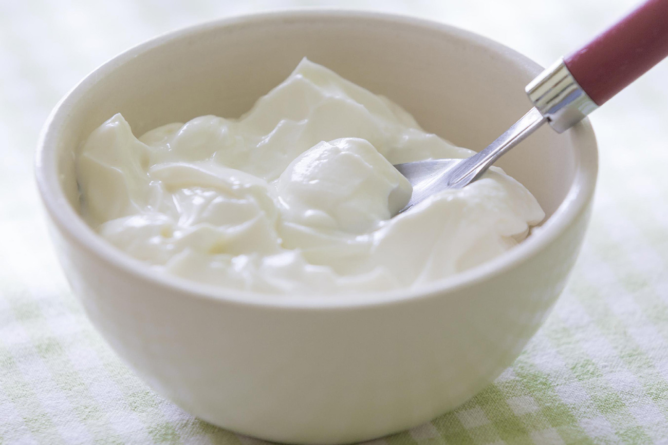 lactobacillus bulgaricus essay Lactobacillus bulgaricus pb-lb57 is is a gram-positive rod that may appear long and filamentous it is one of several bacteria used for the production of yogurt, and.