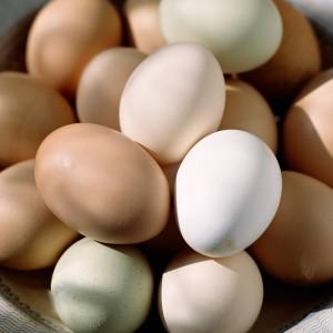 bahar-suthanesi-kahvaltılıklar-yumurta-3
